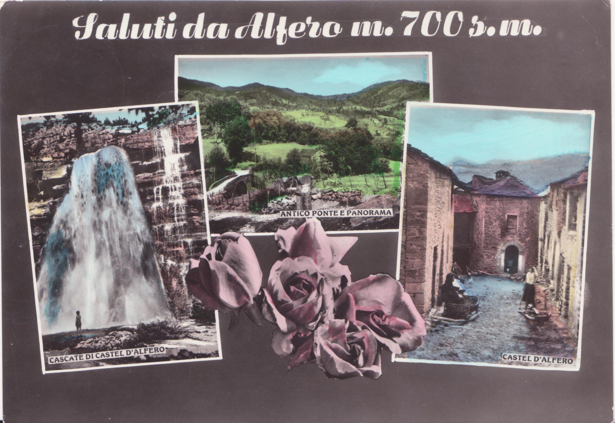 CARTOLINE DA ALFERO